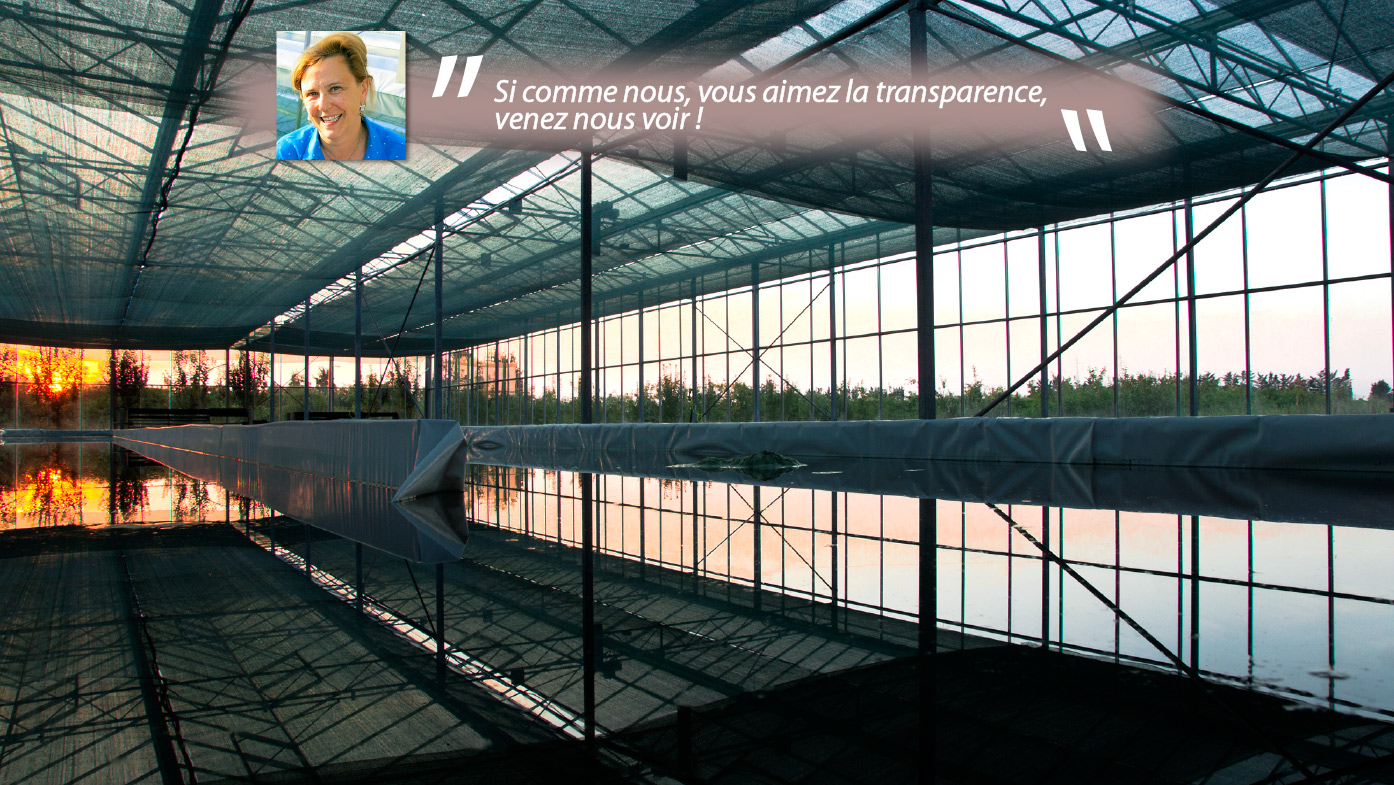 VisiteTransparence