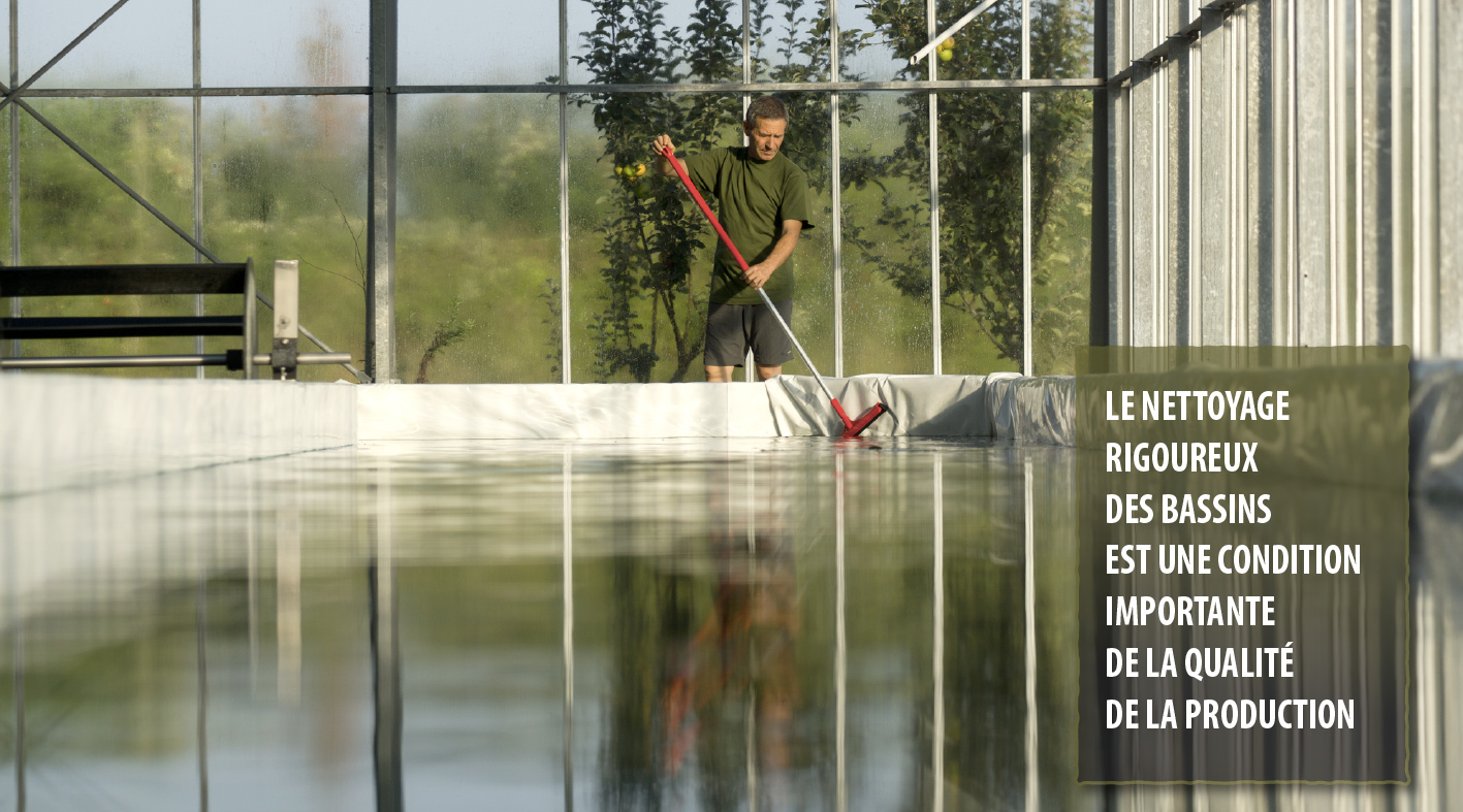 Le nettoyage rigoureux des basins est une condition importante de la qualité de la production.